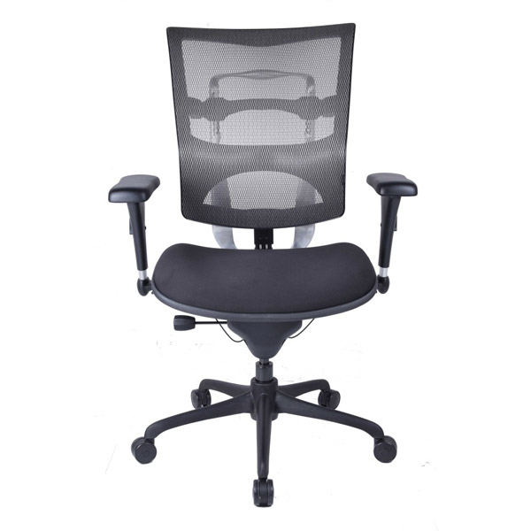 B6-300 Spacious Ease Task Chair