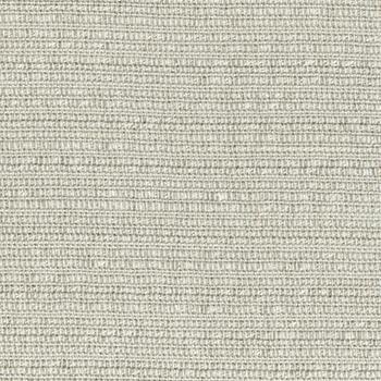 Passage Wing Fabric