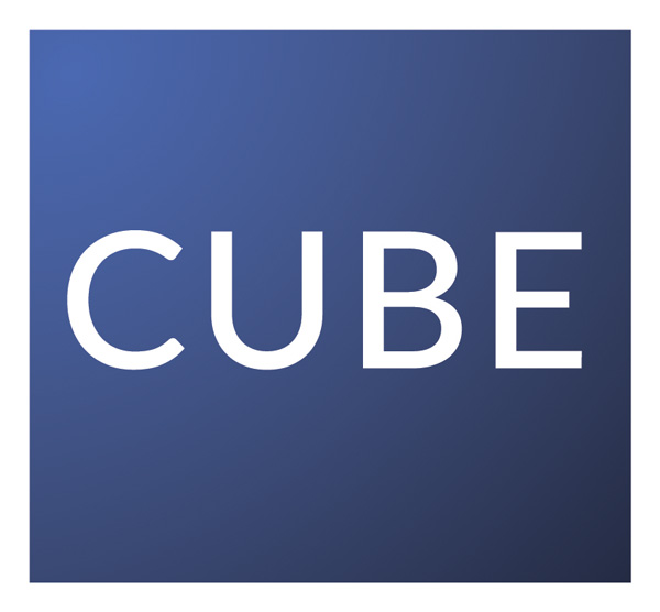 Cube Solutions Logo Block